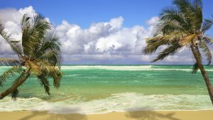 Tropical Beach Scenes Wallpaper 49+