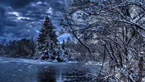 Winter Nature Wallpaper 74+