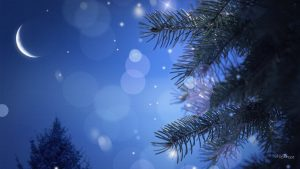Winter Night Scenes Wallpaper 47+