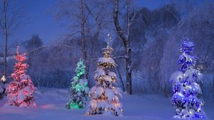 Winter theme Background 35+