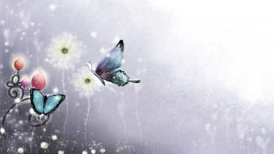 Butterfly Screensavers and Wallpapers 53+